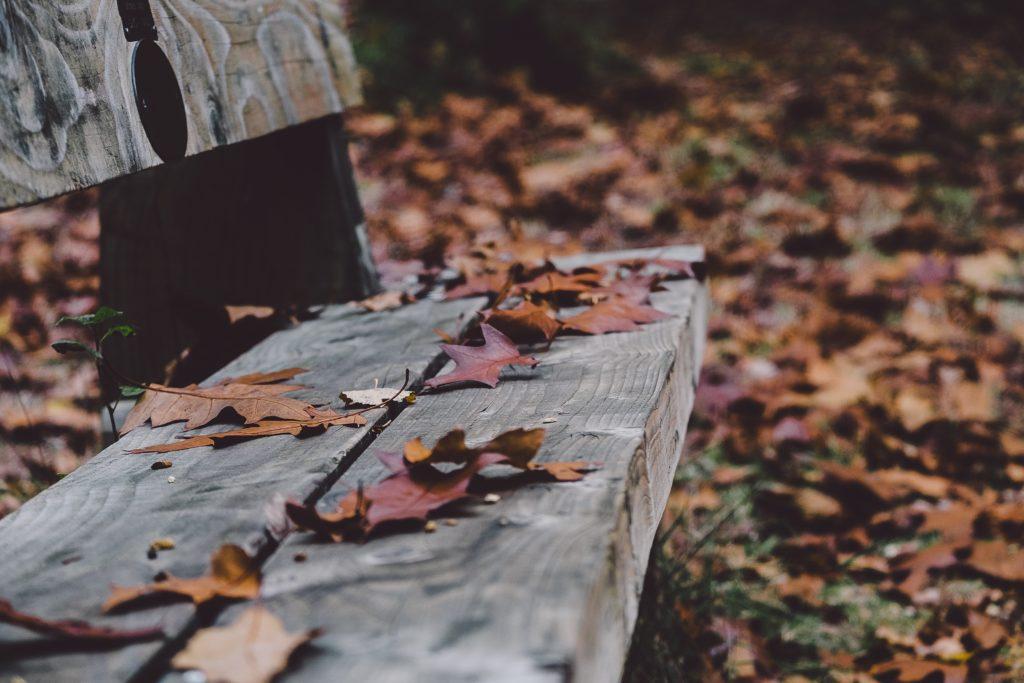 co można zrobić z jesienną chandrą? emma lange